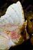 Spiny Waspfish