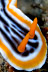 Chromodoris quadricolor Nudibranch