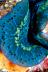 Tridacna Clam